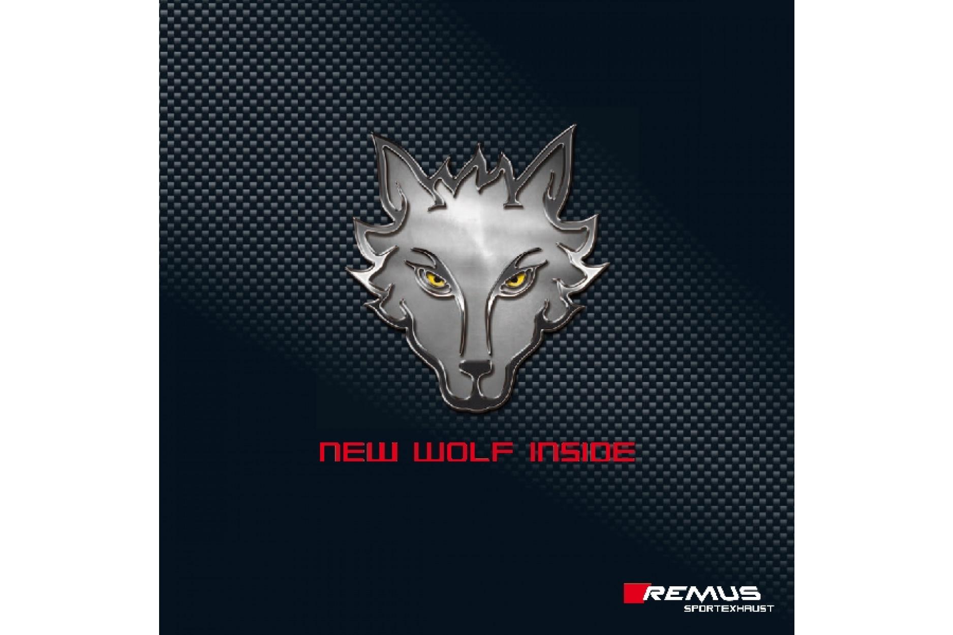 Remus Sportschalldämpfer mit Li/Re je 1 ER 133x85 mm schräg