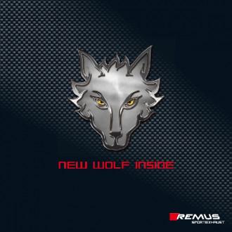 Remus 046517 1500 Sportschalldämpfer mittig für L/R System