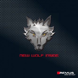 Remus Racing Downpipe mit Sportkat (200 CPSI), ohne Genehmigung